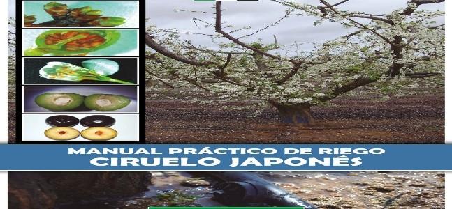 Portada_manual_practico_riego_ciruelo_japones_final