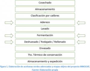 proceso_aceituna_mesa