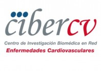 ciber cv